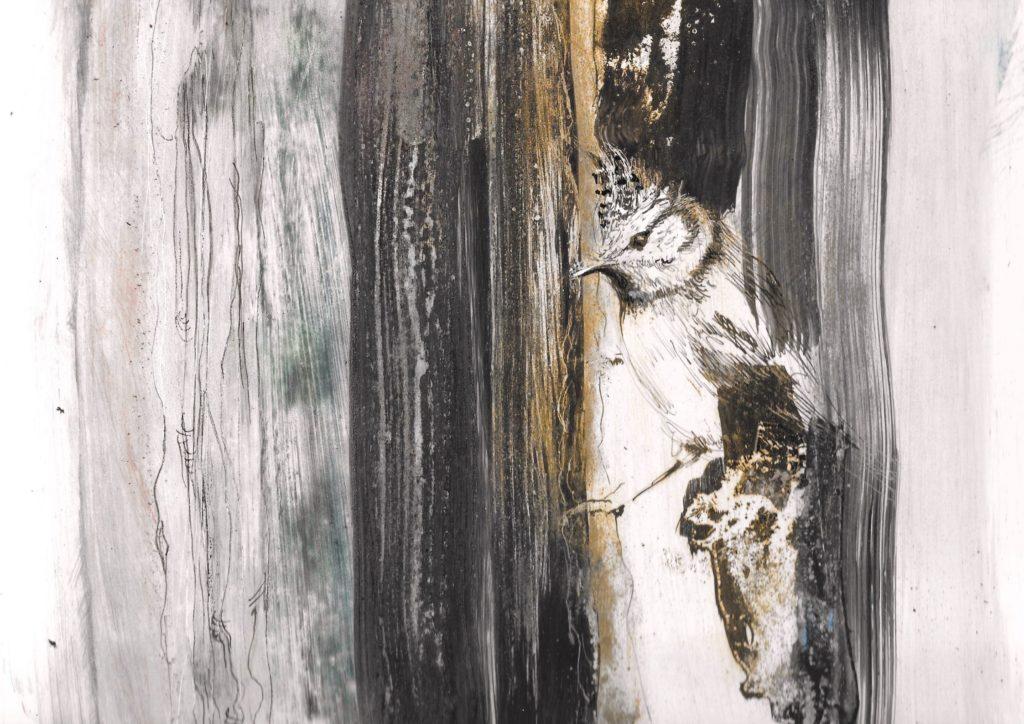 """""""le murmure de la mésange huppée"""" est un dessin à la fois graphique et pictural (techniques mixtes sur papier) dessiné par AlbanePaillard-Brunet, artiste peintre plasticienne"""