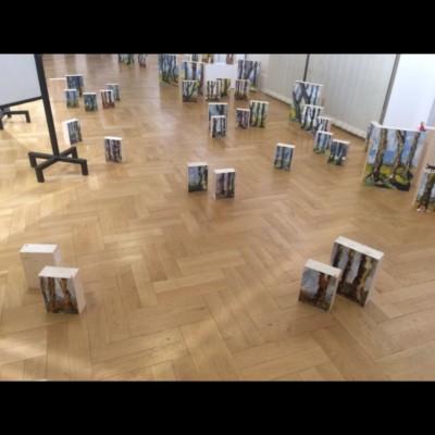 Albane Paillard-Brunet artiste peintre plasticienne expose à Lyon à l'espace Berthelot avec Agnès Colrat, 2016