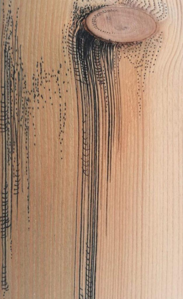 travail dessin graphique, détail des forêts d'Albane Paillard-Brunet, artiste peintre plasticienne